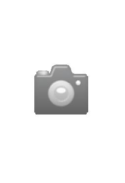 Greenappel 100-100 lindengrün